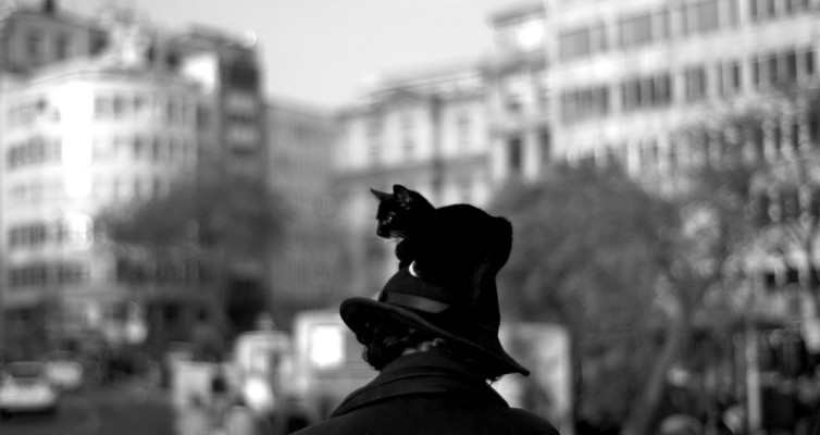 a_man_with_a_cat_hat__by_mormenekshe-d33aj45